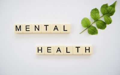 Utah and Nevada rank in the bottom four for mental health among the states